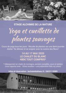 Flyer Stage Yoga et Cueillette de plantes sauvages - Mai 2020 - 4jours