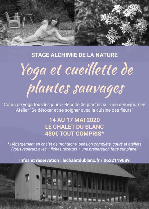 Stage Yoga et cueillette de plantes, du 14 au 17 Mai 2020
