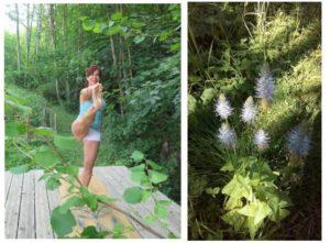 stage Yoga et Alchimie des plantes